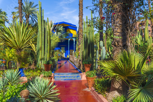 Spoed Foto op Canvas Tuin Le Jardin Majorelle, amazing tropical garden in Marrakech, Morocco.
