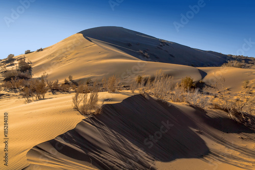 Singing barkhan in the morning autumn rays in the Altyn-Emel national park Wallpaper Mural