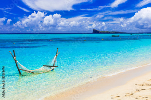 Poster Tropical plage Relaxing tropical holidays with hammock in the turquoise sea.