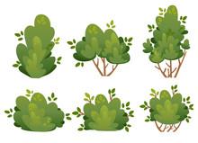 Set Of Natural Bush And Garden...