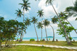 Beautiful exotic beach with coconut tree palm located Koh Kood Island, Thailand