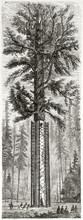 Old Vertical Illustration Of A...