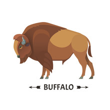 Bison Icon. Vector Illustratio...