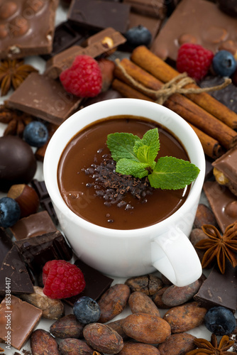 Spoed Foto op Canvas Chocolade hot chocolate with mint in a cup and ingredients, vertical