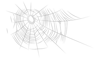 The old web, isolated on white background