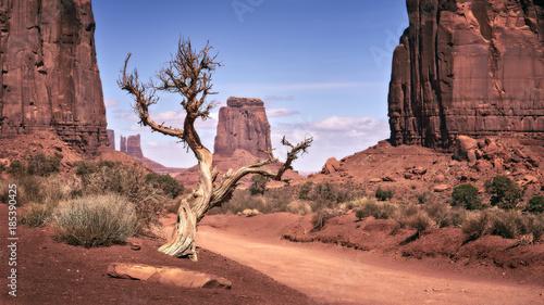 Fotografie, Obraz  In the Valley