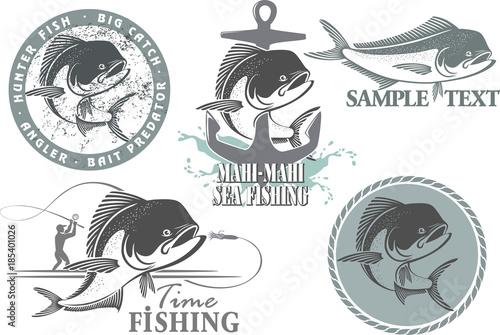 Fotografie, Obraz  mahi-mahi fish