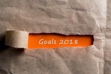 2018 Goals Uncovered Letter In...