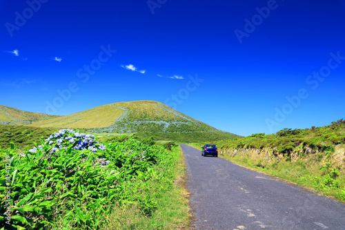 Alpine road on Flores Island, Azores, Portugal, Europe