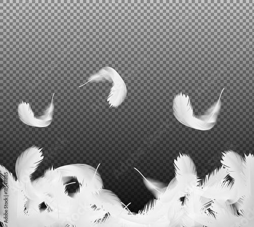 Realistyczne 3d biały ptak spada kręcone pióra na przezroczystym tle. Symbol lekkości, niewinności, nadziei, nieba. Ilustracja wektorowa, może służyć jako tło plakatu, karty lub reklamy