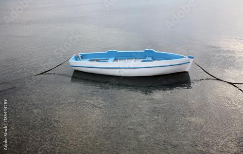 Garden Poster Water Motor sports Boat in Zadar Croatia