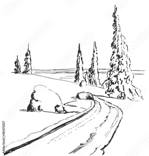 Drawing Christmas Tree Sketch.Hand Drawing Winter Forest With Road Isolated Vector