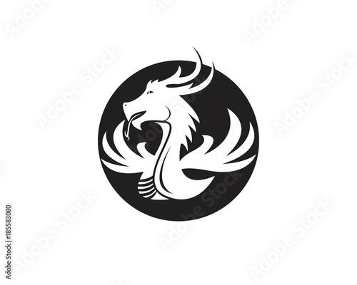 Fototapety, obrazy: Dragon logo design template