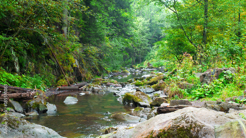 Silky Smooth Stream Of Clear Water Through Small Cascades And Stones