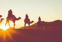 Camel Caravan With People Goin...