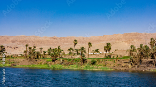Fotografia, Obraz  River Nile in Egypt. Life on the River Nile