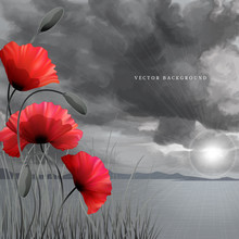 Vector Background Or Card. Poppies And Grass. Imitation Black And White Photos. Overcast Sky Painted Pastel. Sun Shines Through The Clouds And Sea. Perfect For Announcements, Invitations And Greetings