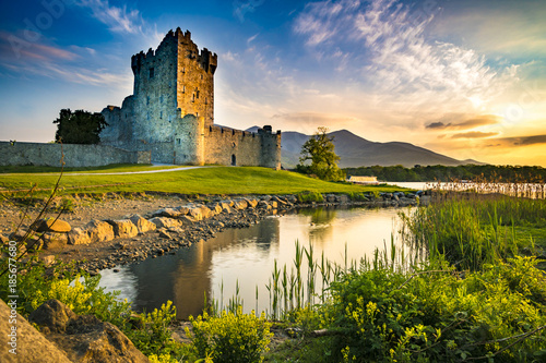 Ancient old Fortress Ross Castle ruin with lake and grass in Ireland during gold Canvas Print