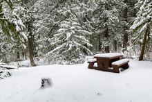Winter Landscape Of A Snow Cov...