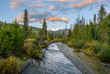 Sunset Mountain Creek - An Autumn Sunset View Of Middle Fork Elk River Flowing Through Rocky Mountains In Routt National Forest, Near Steamboat Springs, Colorado, USA.