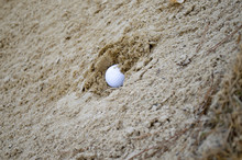 Golf Ball Buried In Sand Trap