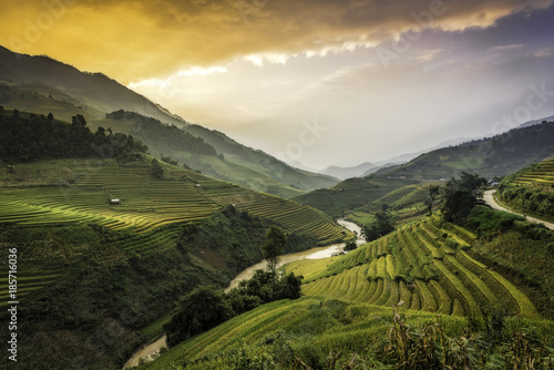 Autocollant pour porte Les champs de riz Terraced rice field landscape of Mu Cang Chai, Yenbai, Northern Vietnam