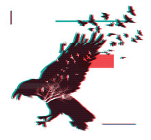 Flying Raven. Double Exposure Effect With Glitch Error