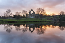 Bolton Priory On The River Wharfe Yorkshire Dales