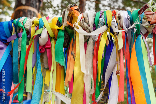 Foto op Aluminium Paradijsvogel bloem Colored ribbons to the Holy tree. Zalaal. Near Source of mineral water. Arshan. Russia