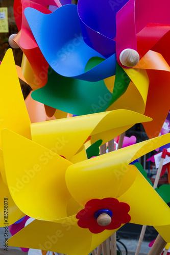 Fotografering  multicolore