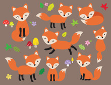 Cute Fox Vector Illustration I...
