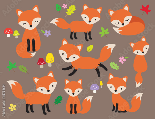 Photo Cute fox vector illustration in various poses with leaves and flower elements