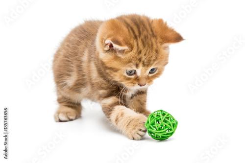 Fotografie, Obraz  Little orange kitten and colorful balls