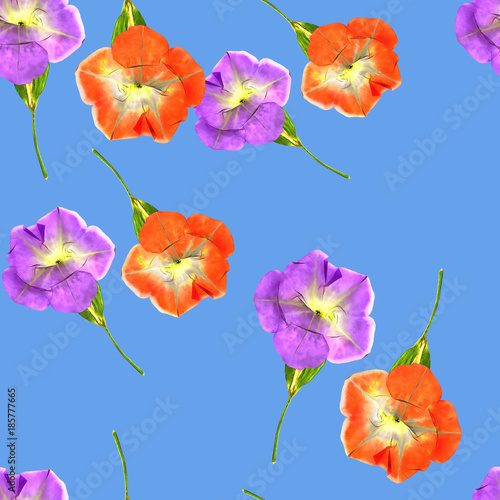 Petunia. Seamless pattern texture of flowers. Floral background, photo collage - 185777665