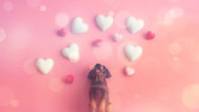 The Black Dog Sits Up To Look At The Floating Heart With A Pink Background.Happy Valentines Day Background.Saint Valentine's Day Concept. Can Be Used For Celebrations Valentines Day.