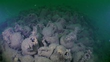 The Wreck Of An Ancient Ship: ...