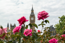Big Ben And Elizabeth Tower Fr...