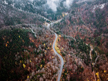 Winding Serpentine Mountain Road Through A German Forest During Autumn With Orange And Yellow Fall Colors