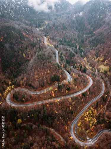 Staande foto Chocoladebruin Winding serpentine mountain Road through a german forest during autumn with orange and yellow fall colors
