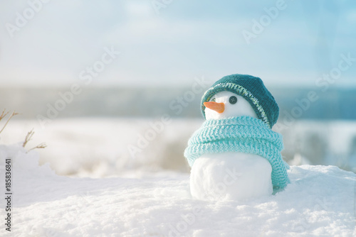 Obraz na plátně Little snowman in a cap and a scarf on snow in the winter