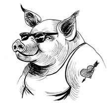 Cool Pig In Sunglasses. Black And White Ink Illustration