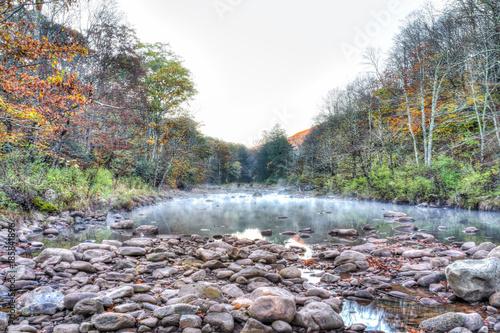 Morning dark river tea creek landscape with mist, fog and autumn fall foliage fo Wallpaper Mural