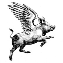 Flying Pig. Black And White In...