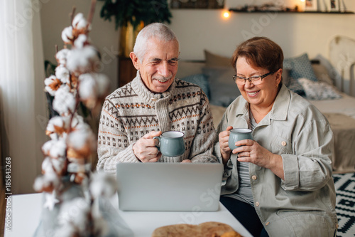 Happy laughing senior couple watching funny sitcom on laptop Canvas Print