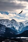 Zimowe góry panorama Zakopanego, Wysokie Tatry, Polska - 185846096