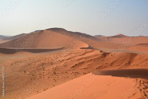 Papiers peints Corail dune namibie