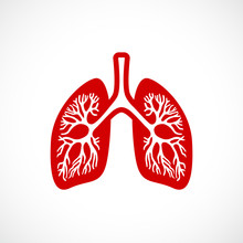 Breath Lungs Vector Icon