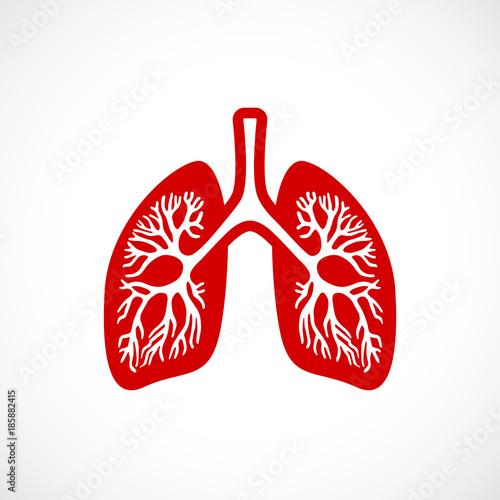 Breath lungs vector icon Tapéta, Fotótapéta