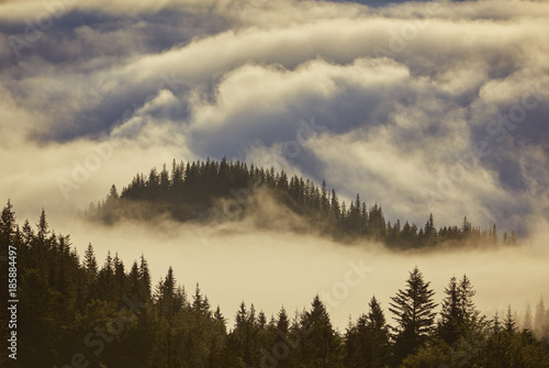 Poster Morning with fog Misty dawn in the mountains