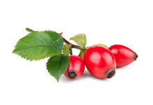 Rose-hips With Leaves Isolated...